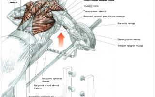 Тяги Т-образного грифа (гребля) с упором