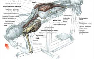 Поясничные прогибания для низа спины